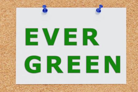 unsurpassed: Render illustration of Ever Green script on cork board Stock Photo