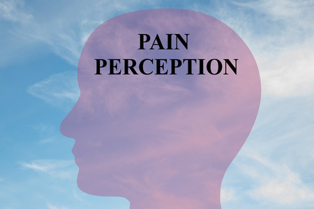 brainwaves: Render illustration of Pain Perception title on head silhouette, with cloudy sky as a background.