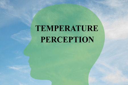 gamut: Render illustration of Temperature Perception title on head silhouette, with cloudy sky as a background