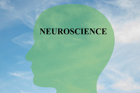 neuroscience: Render illustration of NEUROSCIENCE script on head silhouette, with cloudy sky as a background. Human brain concept. Stock Photo