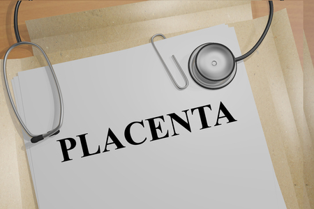placenta: 3D illustration of PLACENTA title on medical documents. Medicial concept.