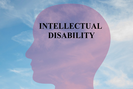 Render illustration of INTELLECTUAL DISABILITY script on head silhouette, with cloudy sky as a background. Human mental concept.