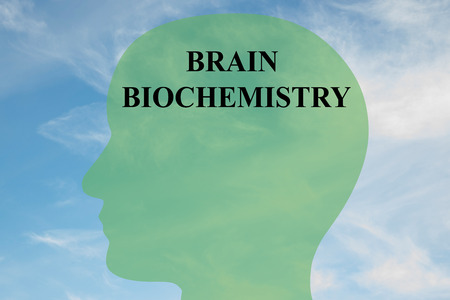 biochemistry: Render illustration of BRAIN BIOCHEMISTRY script on head silhouette, with cloudy sky as a background. Human brain concept. Stock Photo
