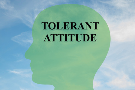 gentleness: Render illustration of TOLERANT ATTITUDE script on head silhouette, with cloudy sky as a background. Human mental concept. Stock Photo