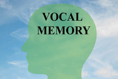 vocal: Render illustration of VOCAL MEMORY script on head silhouette, with cloudy sky as a background. Human mental concept.