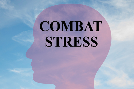 combatant: Render illustration of COMBAT STRESS script on head silhouette, with cloudy sky as a background. Stock Photo