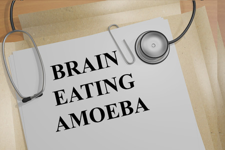 amoeba: 3D illustration of BRAIN EATING AMOEBA title on medical document