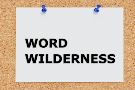 wilderness: Render illustration of WORD WILDERNESS on cork board. Abstract concept.