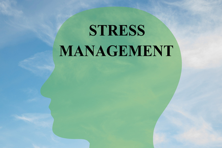 stress management: Render illustration of STRESS MANAGEMENT script on head silhouette, with cloudy sky as a background.