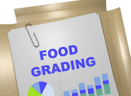 grading: 3D illustration of FOOD GRADING title on business document