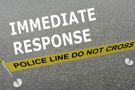 business continuity: 3D illustration of IMMEDIATE RESPONSE title on the ground in a police arena
