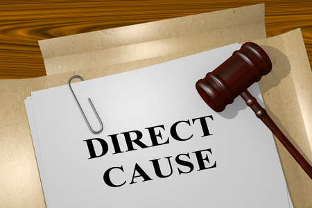 persevere: 3D illustration of DIRECT CAUSE title on legal document