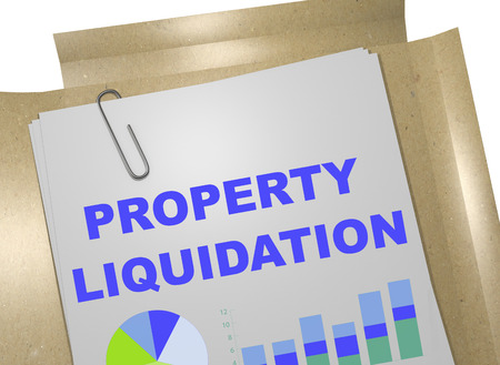 liquidation: 3D illustration of PROPERTY LIQUIDATION title on business document
