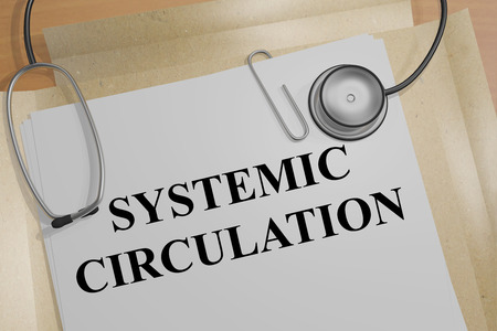 systemic: 3D illustration of SYSTEMIC CIRCULATION title on a medical document