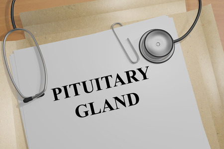 pituitary gland: 3D illustration of PITUITARY GLAND title on a medical document