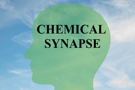 neurotransmitter: Render illustration of CHEMICAL SYNAPSE script on head silhouette, with cloudy sky as a background.