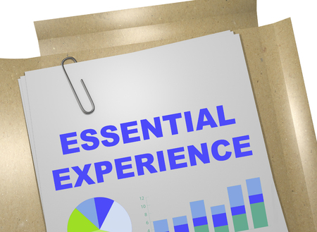 prospects: 3D illustration of ESSENTIAL EXPERIENCE title on business document Stock Photo