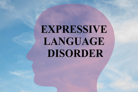 Render illustration of EXPRESSIVE LANGUAGE DISORDER title on head silhouette, with cloudy sky as a background.
