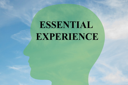 qualify: Render illustration of ESSENTIAL EXPERIENCE script on head silhouette, with cloudy sky as a background.