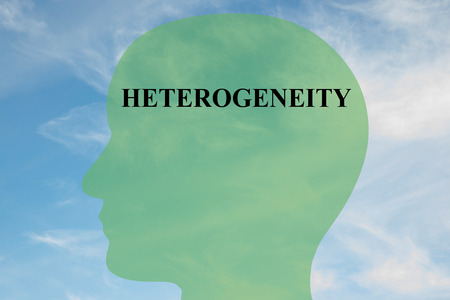 the heterogeneity: Render illustration of HETEROGENEITY script on head silhouette, with cloudy sky as a background. Stock Photo