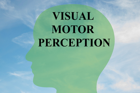 Render illustration of VISUAL MOTOR PERCEPTION script on head silhouette, with cloudy sky as a background. Stock Photo