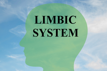 Render illustration of LIMBIC SYSTEM script on head silhouette, with cloudy sky as a background. Stock Photo