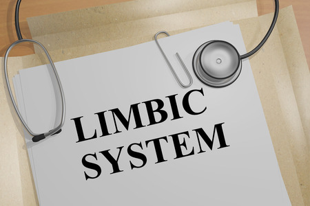 3D illustration of LIMBIC SYSTEM title on a medical document
