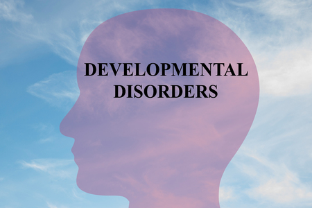 psychosocial: Render illustration of DEVELOPMENTAL DISORDERS title on head silhouette, with cloudy sky as a background.