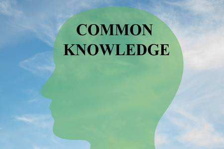 rationality: Render illustration of COMMON KNOWLEDGE script on head silhouette, with cloudy sky as a background.