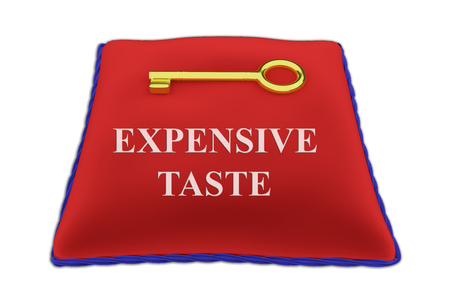 3D illustration of EXPENSIVE TASTE Title on red velvet pillow near a golden key, isolated on white.