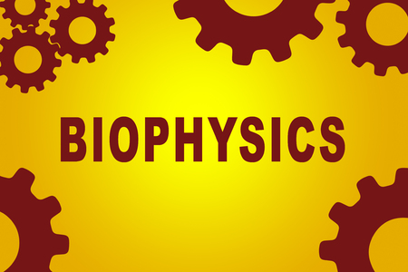 biophysics: BIOPHYSICS sign concept illustration with red gear wheel figures on yellow background