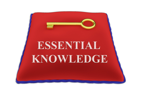 3D illustration of ESSENTIAL KNOWLEDGE Title on red velvet pillow near a golden key, isolated on white.