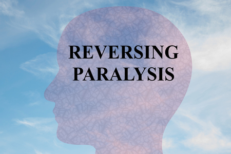 Render illustration of REVERSING PARALYSIS title on head silhouette, with cloudy sky as a background. Stock Photo