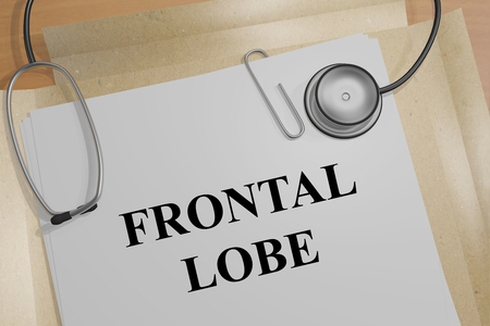 frontal lobe: 3D illustration of FRONTAL LOBE title on a medical document
