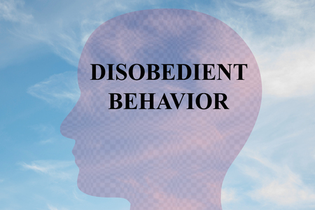 Render illustration of DISOBEDIENT BEHAVIOR title on head silhouette, with cloudy sky as a background.