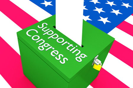 3D illustration of Supportive Congress script on a ballot box, with US flag as a background.