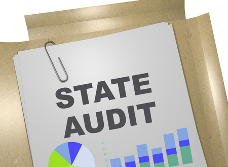 3D illustration of STATE AUDIT title on business document