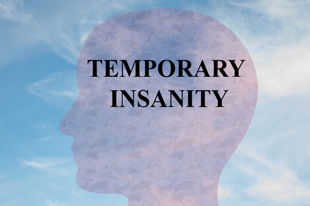 Render illustration of TEMPORARY INSANITY title on head silhouette, with cloudy sky as a background.