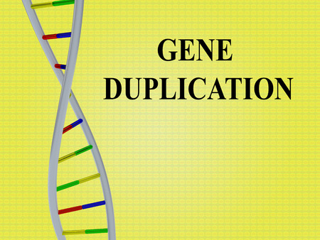3D illustration of GENE DUPLICATION script with DNA double helix , isolated on yellow background.