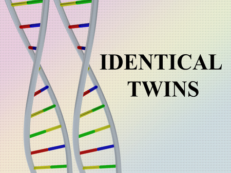 3D illustration of IDENTICAL TWINS script with two identical pairs of DNA double helix