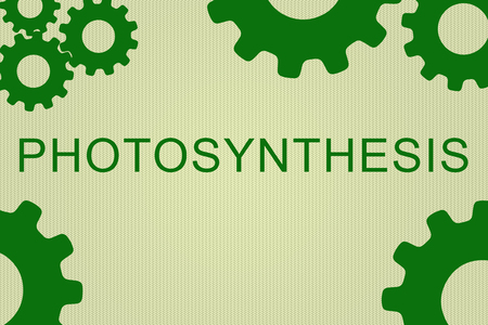 PHOTOSYNTHESIS sign concept illustration with green gear wheel figures on pale green background