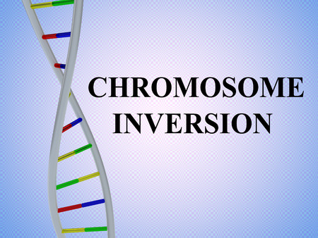 3D illustration of CHROMOSOME INVERSION script with DNA double helix , isolated on colored pattern. Stok Fotoğraf