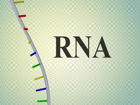 3D illustration of RNA script with single helix , isolated on pale blue background.