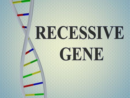 3D illustration of RECESSIVE GENE script with DNA double helix , isolated on pale blue gradient.