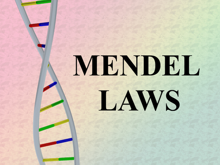 3D illustration of MENDEL LAWS script with DNA double helix , isolated on colored gradient.