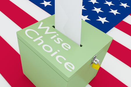 3D illustration of Wise Choice script on a ballot box, with US flag as a background.