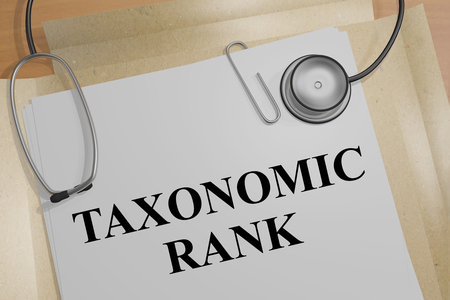 3D illustration of TAXONOMIC RANK title on a medical document