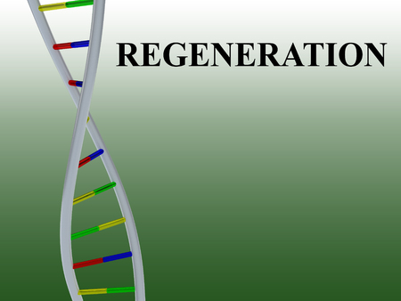 3D illustration of REGENERATION script with DNA double helix , isolated on colored pattern.