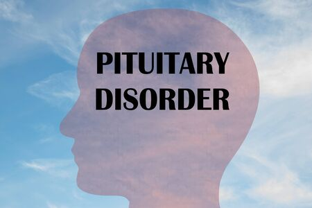 Render illustration of PITUITARY DISORDER title on head silhouette, with cloudy sky as a background.