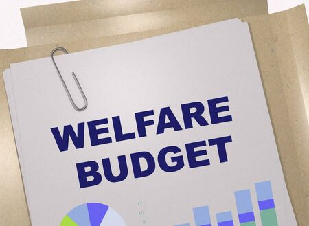 3D illustration of WELFARE BUDGET title on business document
